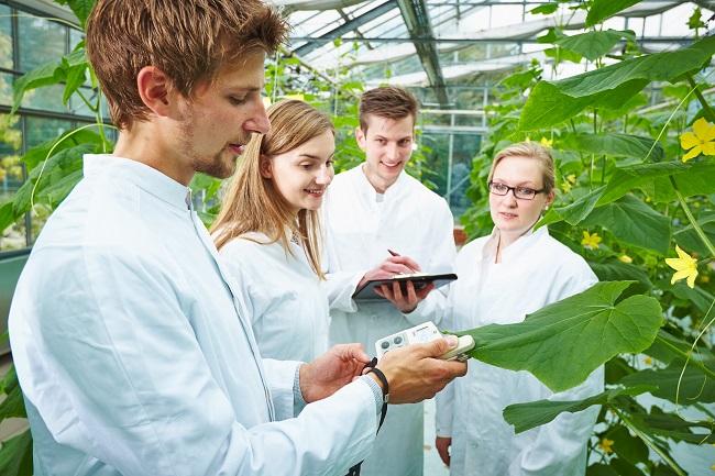 Gartenbau – ein praxisnahes Studium mit Perspektiven