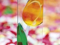 Gläserne Tulpe