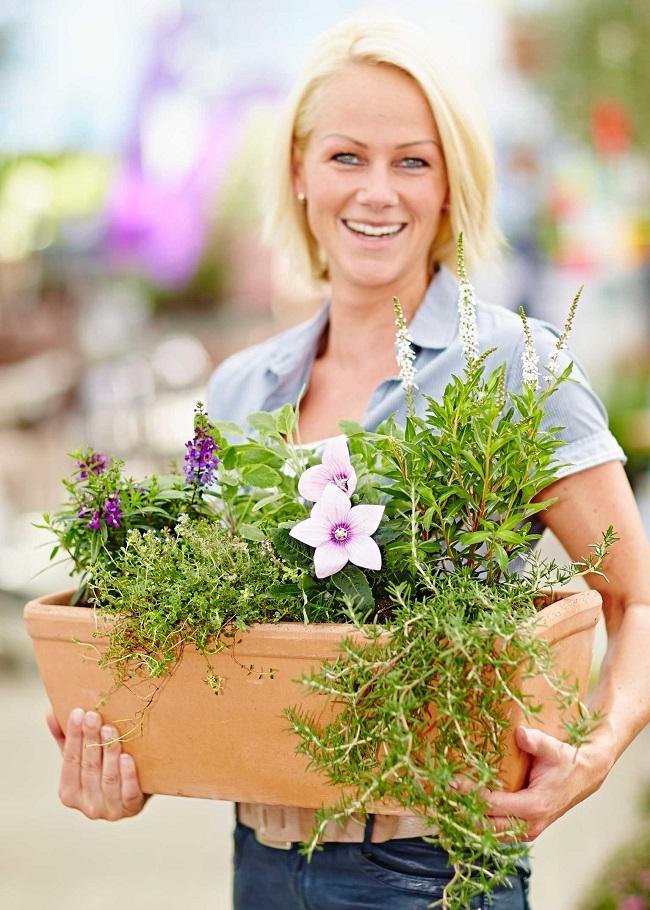 beet und balkonpflanzen mit kr uter kombinieren gawina beet und balkonpflanzen kr uter. Black Bedroom Furniture Sets. Home Design Ideas