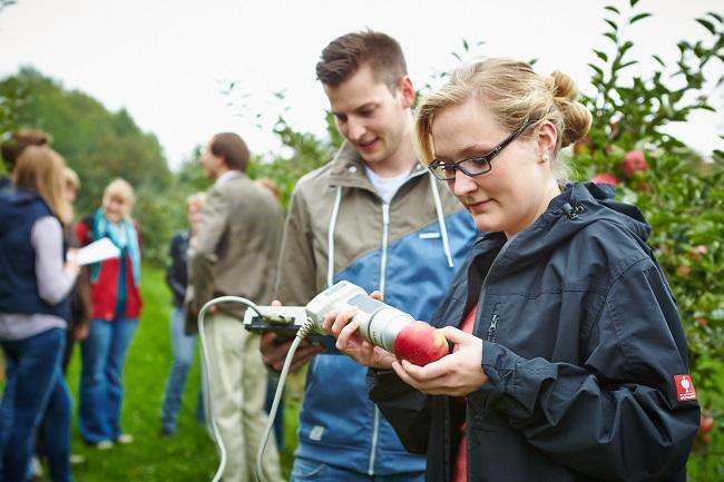 Gärtner – ein naturverbundener Beruf für technisch Interessierte
