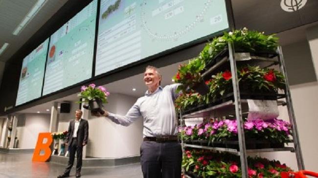 FloraHolland Floristen-Versteigerung