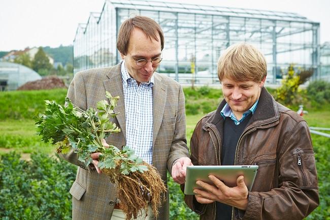 Gärtner – ein facettenreicher Beruf, der zufrieden macht