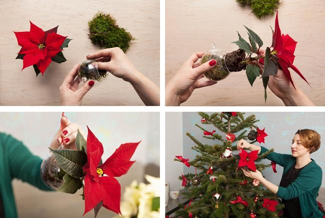 m rchenhafte dekorationsideen mit dem weihnachtsstern gawina deko vorschl ge f r. Black Bedroom Furniture Sets. Home Design Ideas