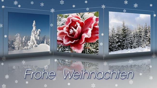 Frohe Weihnachten_Rosel Eckstein_pixelio.de
