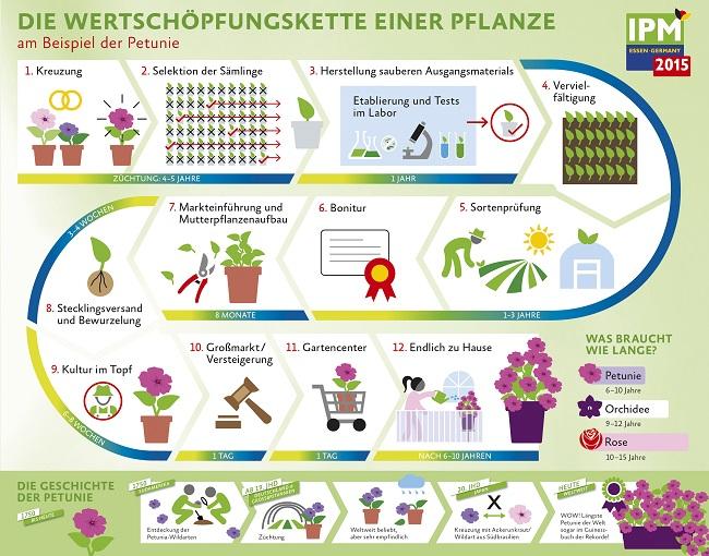 Wertschöpfungskette einer Pflanze