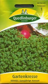 Quedlinburger Gartenkresse
