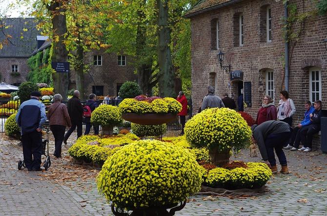Arcen Chrysanthemenshow Schlossgaerten