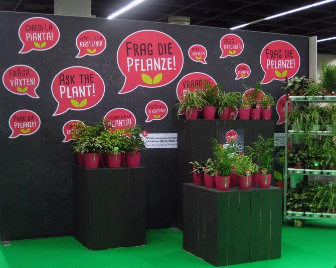 Landgard_spoga+gafa_Frag die Pflanze