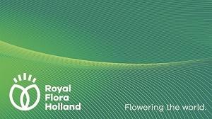 FloraHoland neu