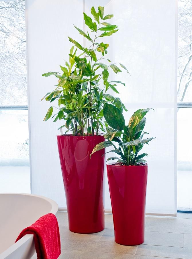 Bildunterschrift: Das Gefäß-Duo wird zum echten Hingucker: XL-Gefäße in kräftigen Farbtönen – wie hier in Knallrot – sorgen für einen lebendigen Akzent im weißen Badezimmer. Grünpflanzen mit ihren kräftig, grünen Blättern bilden einen guten Kontrast. (Bildnachweis: GMH/FvRH)