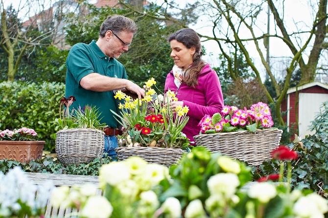 Bildunterschrift: Frühjahrsblüher sind jetzt besonders wirkungsvoll. Die Palette reicht von Tulpen und Narzissen bis hin zu Primeln oder Tausendschön. Alles was farbenfroh ist und leuchtend blüht gefällt nach dem tristen Grau des Winters. (Bildnachweis: GMH/BVE)