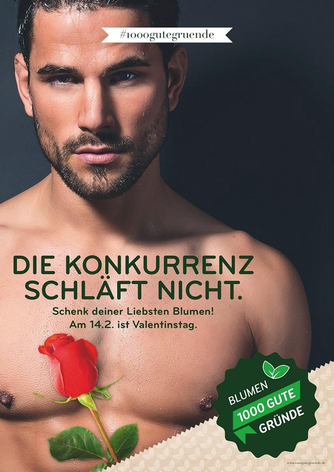 Landgard_ Poster zum Valentinstag
