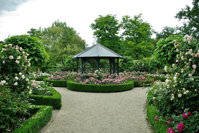 Kasteel_Klassischer-Rosengarten-mit-Allium-Globemaster