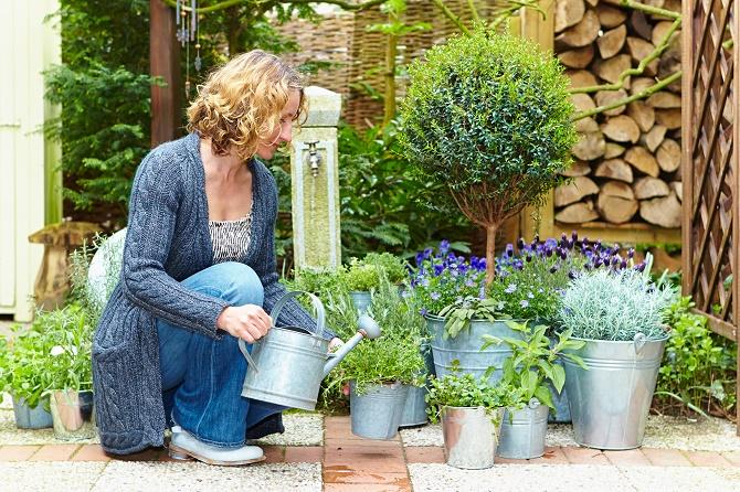Bildunterschrift: Mediterrane Pflanzen schaffen natürlich schöne Augenbli-cke und sorgen für Urlaubsstimmung zuhause. (Bildnachweis: GMH)