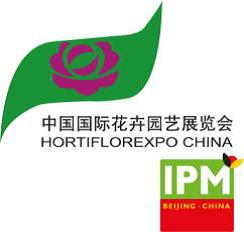 IPM China Logo
